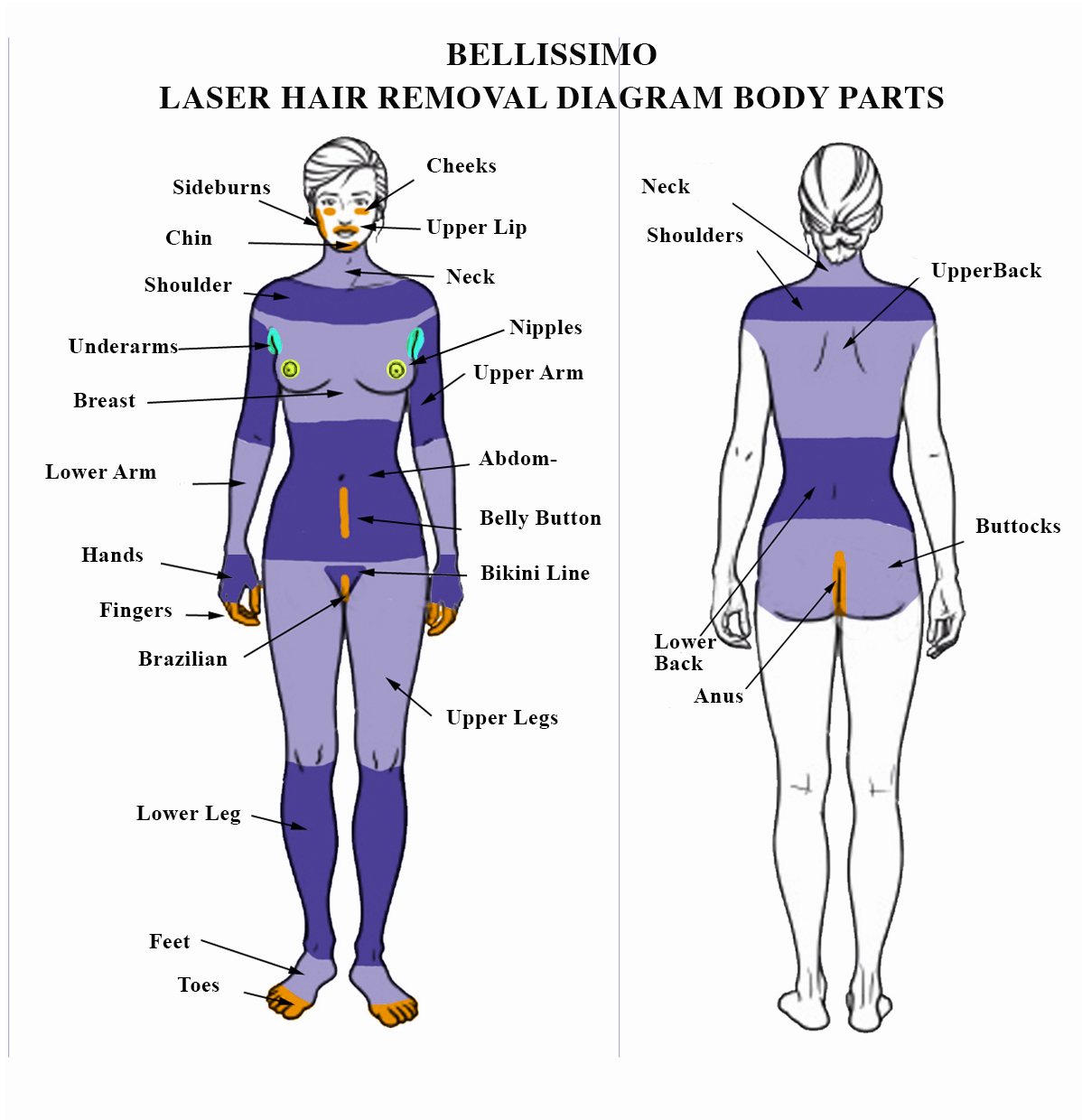 Bellisimo diagram soprano laser hair removal